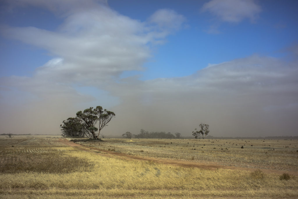 dust storm, Victorian Mallee