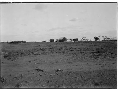 Mallee country,  circa 1945