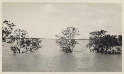 Flood, Mallee Wimmera, 1925, Anon
